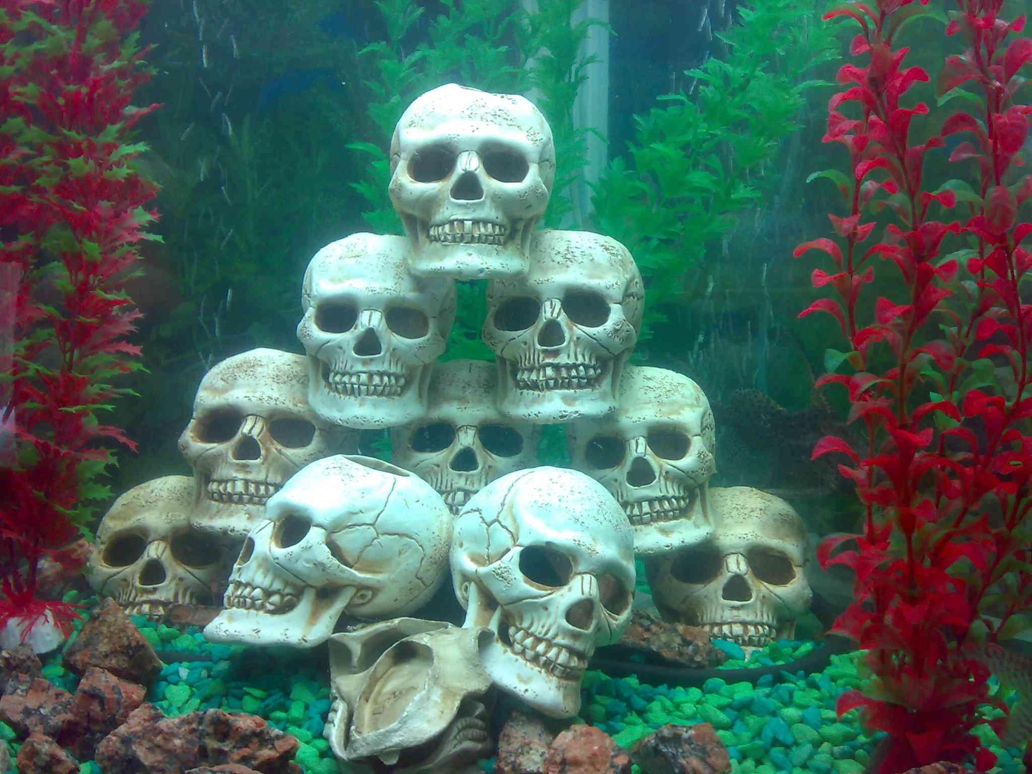 Изготовление грота своими руками в аквариум